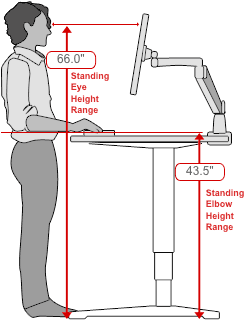 Human Solution standing desk dimensions